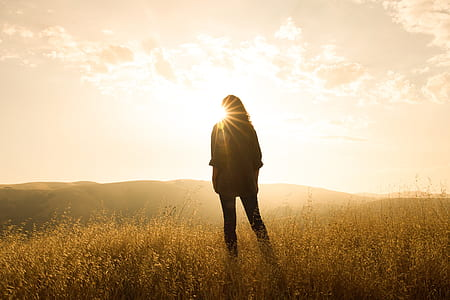 silhouette of person standing on grass field