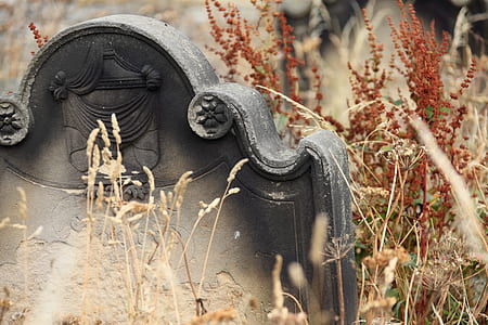 gray and black tombstone