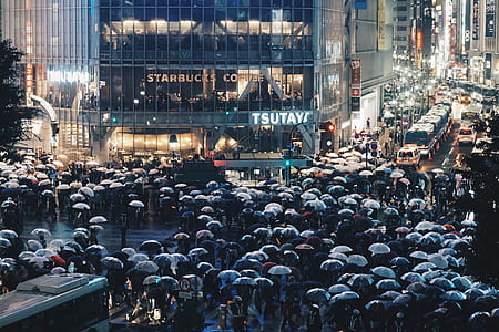 people holding umbrellas in front of Starbucks Coffee building