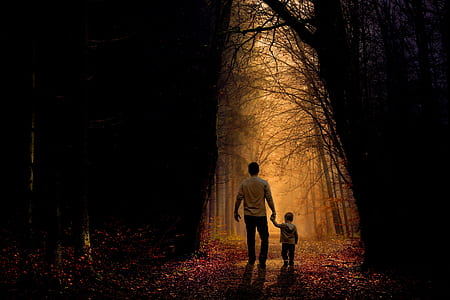 man and toddler walking on dried forest during dawn