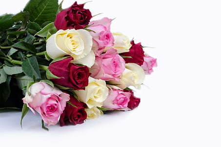 bouquet of pink and red rose flowers
