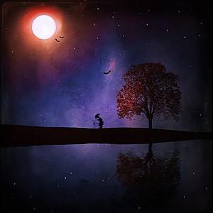 silhouette photon of tree under moon