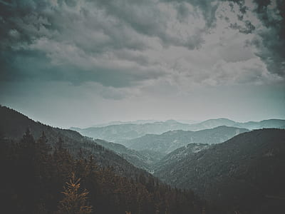 mountains and trees landscape photo
