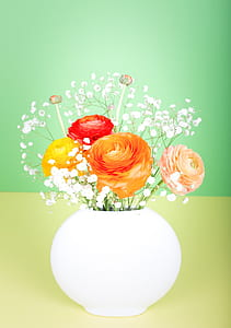 orange, yellow, and red ranunculus flowers in white vase