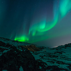photography of green aurora