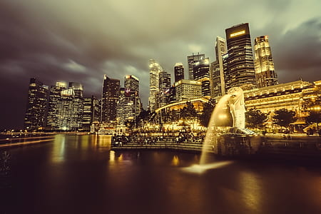 lion fountain and high rise buildings photo
