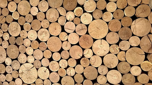 round brown logs