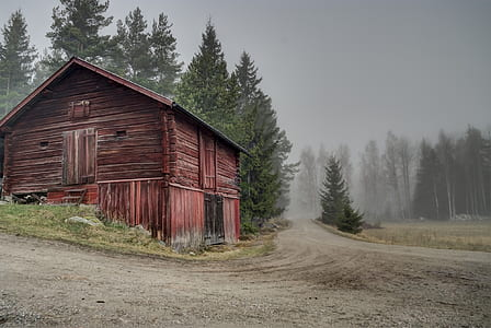 red wooden barn along road at daytime