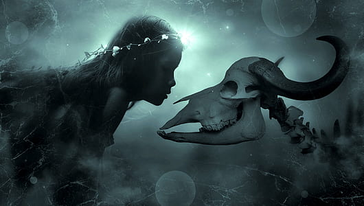woman and animal skull wallpaper