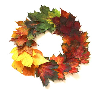 assorted-color maple leaves wreath