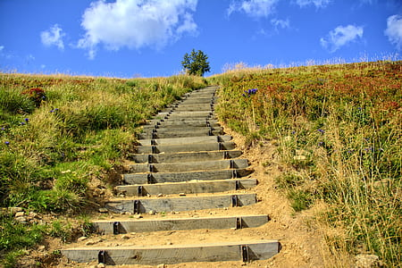 gray cement stair surrounded by grass under blue and white cloudy sky