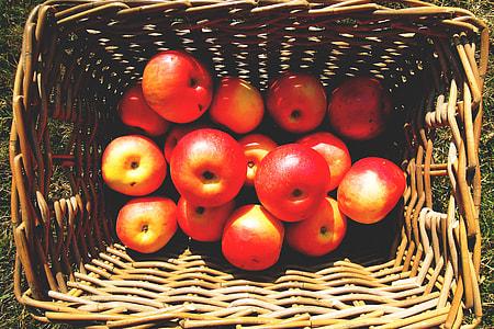 Overhead shot of basket of apples