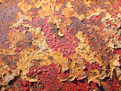 weathered leaves on red ground