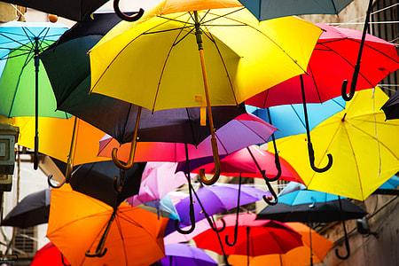 assorted-color umbrella display
