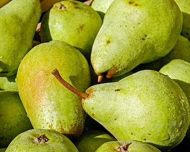 bunch of green guava fruits