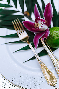 Colorful Exotic Flowers and Greenery