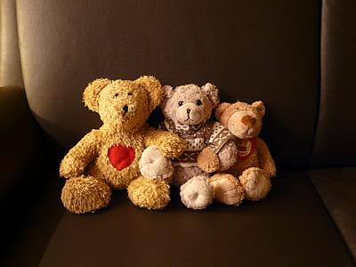 three assorted-color bear plush toys on black leather sofa