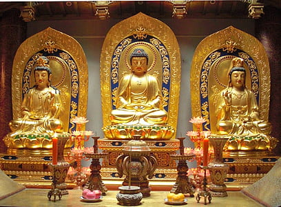 architectural photography of Buddha statues