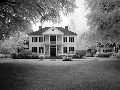 greyscale photography of house surrounded with trees