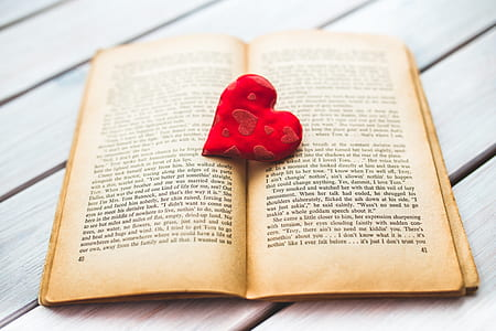 red heart decor on books