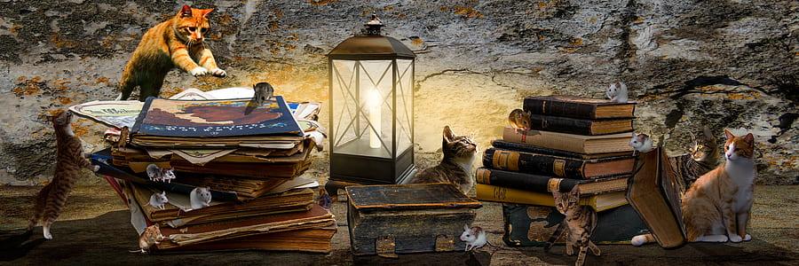 stack of books beside black lantern