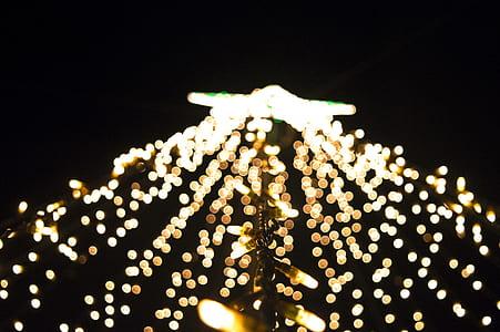 string lights during nighttime
