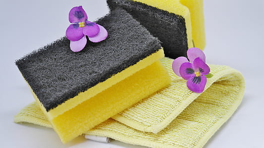 yellow and black sponge