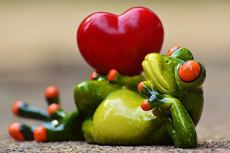green frog with heart