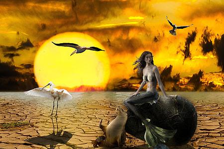 mermaid sitting on rock beside seal and white stork golden hour illustration