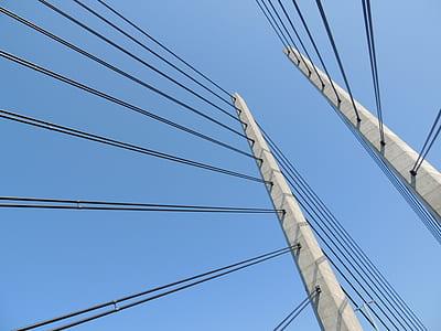 photo of white suspension bridge