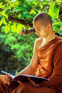 man in brown kasaya reading book under tree at daytime