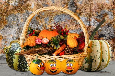 illustration of fruit basket