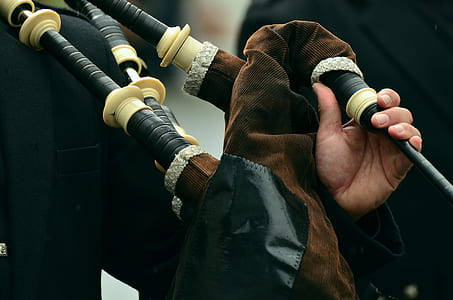 person holding brown and black bag pipe