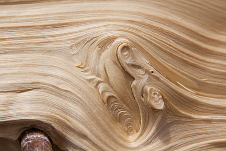 wood, wood chop, split, grain, branch, sprouted grains