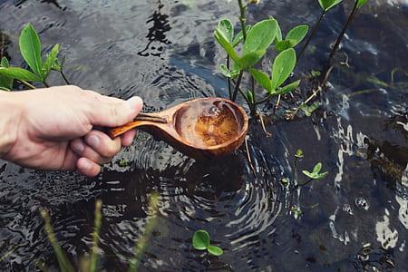 brown wooden spoon