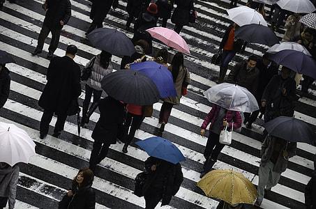 people walking across street
