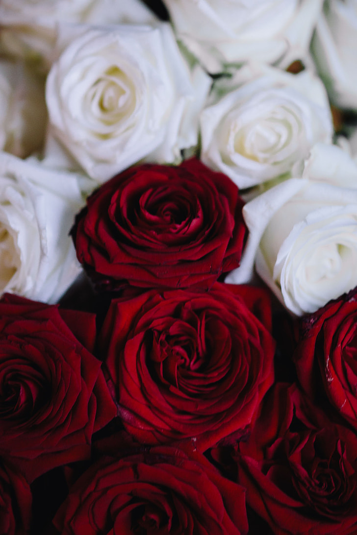 Royalty-Free photo: White And Red Roses Bouquet | PickPik