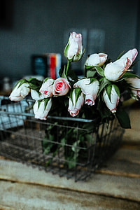 Pink flowers in a metal basket