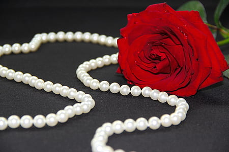 red rose near beaded necklace