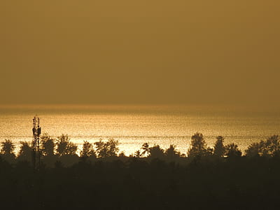 landscape photo of seashore near trees during golden hour