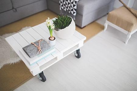 white petal flower on top of rolling rectangular white wooden table