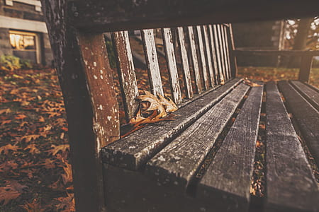 close-up photo of brown wooden bench