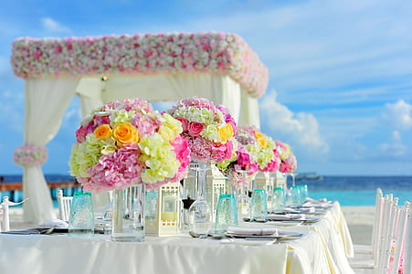 party setting near body of water under blue sunny cloudy sky