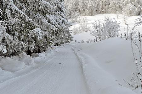 snowfield photograph