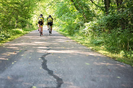 two persons riding bicycle on road between green leaf trees during daytime
