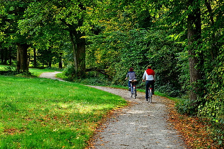 two person riding on bicycles on gray pathway