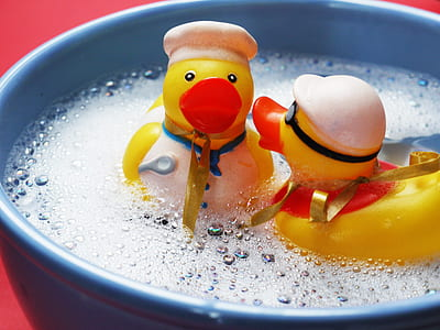 two yellow duckling plastic toys on bowl
