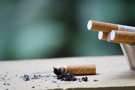 Close-up Photo of Cigarette