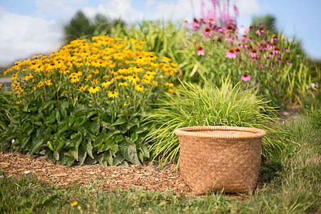 beige wicker basket on grass field beside yellow flowers during daytime