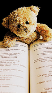 brown bear plush toy on book page